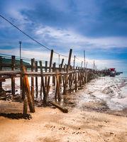 Penang national park, Malaysia.