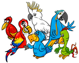 colorful parrots group cartoon illustration
