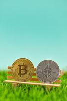 Bitcoin und Ether Münzen auf Bank im Garten
