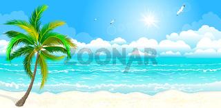 The tropical coast