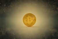 Bitcoin Münze als Internet Geld Konzept