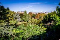 Pond in Buttes-Chaumont Park, Paris