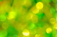 Green and yellow bokeh