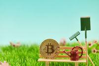 Geldanlage Konzept mit Bitcoin Münze auf Bank