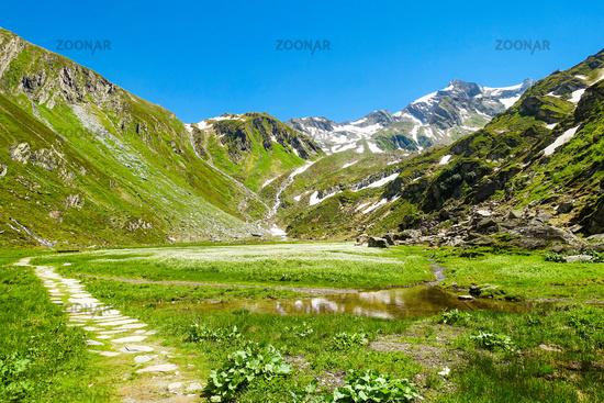 Malerische Hochalm mit geschütztem Hochmoor, Prettau im Ahrntal, Südtirol, Italien