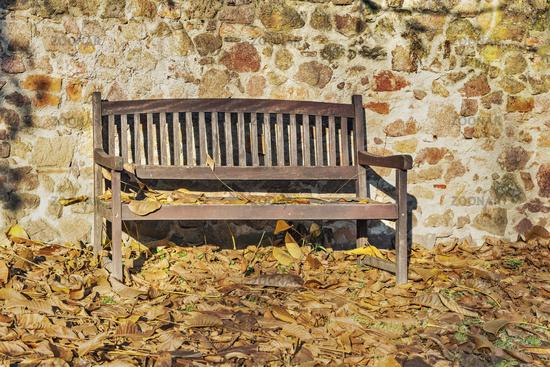 Gartenbank im Herbst   Garden bench in the autumn