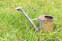 Old metal watering can in the grass