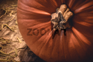 Closeup of big orange seasonal autumn pumpkin with stem on rural natural wood and hay in the countryside - Concept of traditional halloween celebration or decorative thanksgiving food