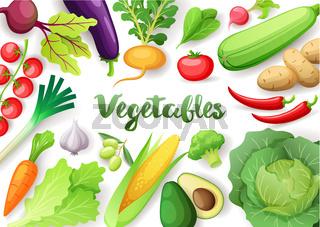 Vegetables top view frame. Farmers market menu design. Colorful fresh vegetables, organic healthy food, vector illustration.