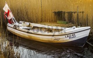 Das Boot hinter dem Schilf am Lebbiner Bodden