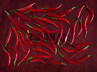 Rote Pepperoni auf roten Untergrund