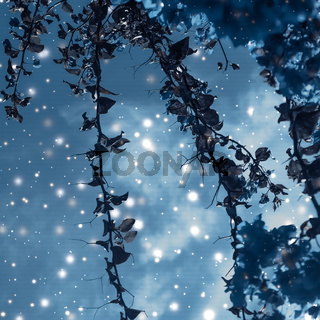 Christmas, New Years blue floral nature background, holiday card design, flower tree and snow glitter as winter season sale backdrop for luxury beauty brand