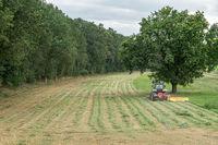 Deich und Felder bei Dömitz an der Elbe