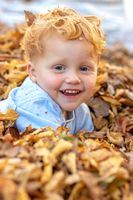 Happy little boy lying in the colorful autumn leaves