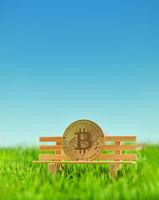 Bitcoin Münze mit Natur Hintergrund