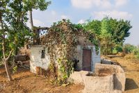 Abandoned white stones bricks rocked hut with rusted iron door and window and tropical green plants