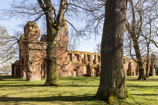 Klosterruine Elderna, Mecklenburg-Vorpommern, Deutschland