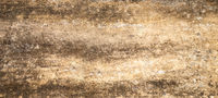 Abstract close-up photo of textured dirty wall horizontal background . White light gray texture