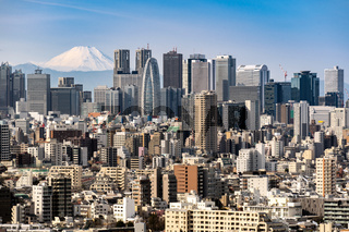 Tokyo skyline and Mountain fuji in Japan.