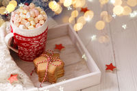 Christmas hot chocolate with marshmallows