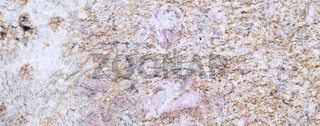 Abstract close-up photo of textured marble horizontal background . White light gray texture