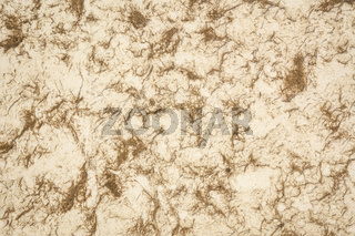 white and brown Huun Mayan paper background