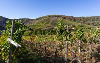 Weinhänge im Ahrtal