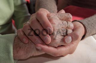 Junge Hände halten alte Hände