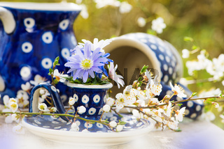 Little spring flowers in a eggcup