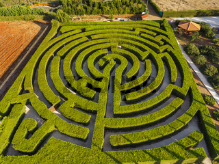 Maze of bushes in botanical park - Ayia Napa Cyprus