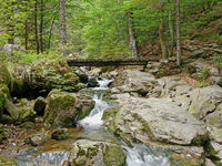 bridge by waterfall Riesloch, wooded rock massif, Bodenmais, national park Bavarian Forest