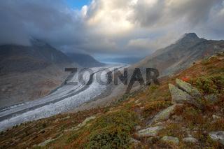 Aletschgletscher mit Eiger im Hintergrund