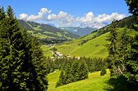 Der Weiler Planay in voralpinre Landschaft mit Weiden und Wäldern im Sommer, Megeve, Frankreich