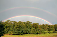 Beautiful double colourful rainbow over the wood