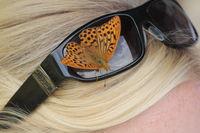 Kaisermantel auf Sonnenbrille