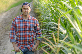 Middle aged caucasian farm worker stands near maize field evening sunset time somewhere in Ukraine