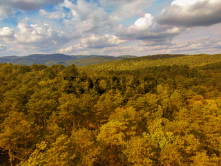 Aerial view over the Anninger hill and the forest of Mödling in lower Austria. Autumn and hiking concept.