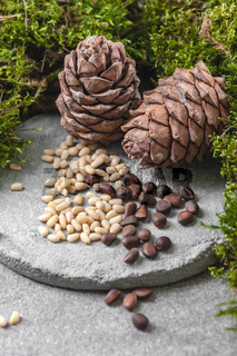 Two pine cones and nuts on a gray concrete background.