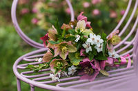 Helleborus flower bouquet
