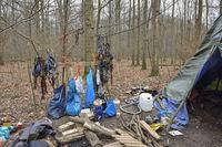 Forst Kletterausrüstung : Hambacher forst polizei reißt erstes baumhaus ab spiegel online