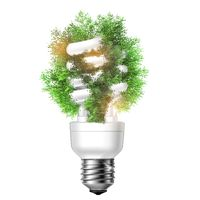 Green energy concept, tree with light bulb