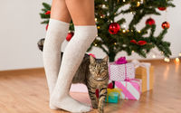 woman, cat and gift boxes under christmas tree