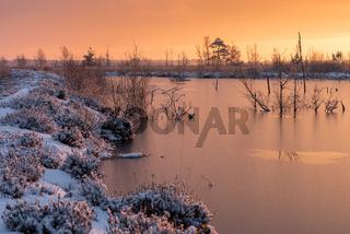 Goldenstedter Moor im winter
