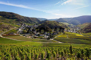 Blick auf Mayschoss vom Rotweinwanderweg