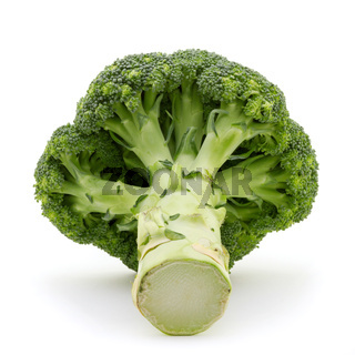 A whole broccoli plant isolated on white background. Green and vegan food