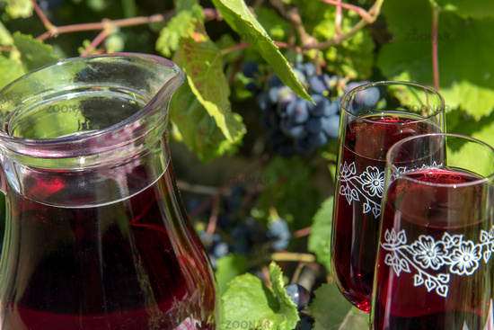 Glass jug with red wine and wine glass on the table. Wine in a carafe with ripe grapes of a vineyard on background.