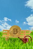Bitcoin Münze auf Bank mit Gießkanne vor Himmel