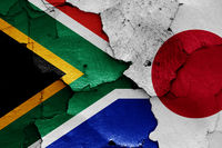 flags of South Africa and Japan painted on cracked wall