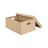 Blank cardboard box with open lid