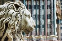 Marble lion's head